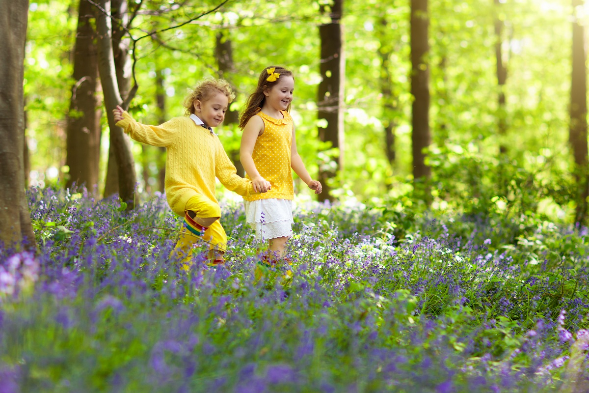 Children-Need-A-Stinging-Insect-Education-From-Bee-Removal-Professionals