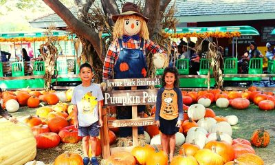 Make-Family-Memories-At-The-Irvine-Pumpkin-Patch