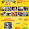 Have Fun With The Whole Family at Orange County Events Like The Citrus Fair