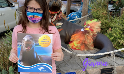 Come to the PMMC and see how to rescue Sea Lions for things to do in Orange County.